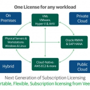 Veeam Introduces Instance Licensing
